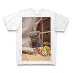 子猫のTシャツ3【送料無料】