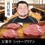 送料無料  谷口畜産 万葉牛 シャトーブリアン 500g(250g×2枚)