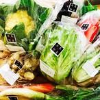 季節の糸島野菜セット詰め合わせBセット(10種〜12種;12p)