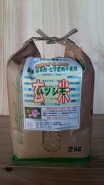 無農薬ハツシモ 玄米2kg(29年産)