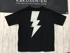 RAIDEN T-shirt 2 (購入制限あり)