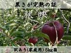 【予約・10月上旬頃発送】黒さが完熟の証! 秋映 5㎏ (10~18玉) 家庭用(訳あり) 長野県産 りんご