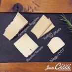 イタリア産 プレミアム チーズアソート N'2 4種セット 約100g 通販 限定商品 パルミジャーノ・レッジャーノ DOP / ペコリーノ・トスカーノ / フォンティーナチーズ DOP / タレッジョ チーズ DOP