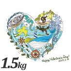 オリジナルバレンタインギフトカード付【朝どれ直送】殻付養殖真牡蠣1.5kg 加熱用