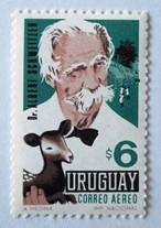 シュバイツァー / ウルグアイ 1967