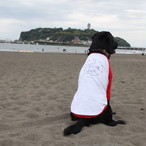 【ペアルック!】Surf Dogイヌ用Tシャツ(赤×白) オリジナルデザイン!