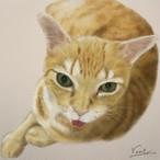 絵画 インテリア アートパネル 雑貨 壁掛け 置物 おしゃれ 猫 動物 デジタルアート ロココロ 画家 : rune 作品 : あっかんべー