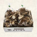 【ネット限定】定番椎茸500gとラッキー椎茸500gのセット