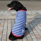 【オリジナル商品発売記念】夏にぴったり!涼しい素材の七分袖ボーダーTシャツ