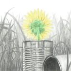 CD「無敵の笑顔」【初回限定版】