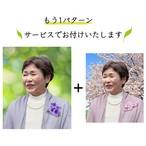 遺影制作 緑のきらめき 青空と桜 昔の思い出 D-009