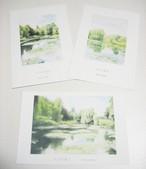 ポストカード「モネの庭シリーズセット」