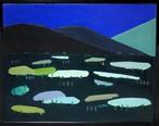油彩画 / 夜の野原