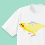 小鳥は恐竜だよ!Tシャツ (オカメインコ)
