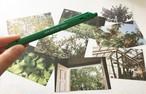 BB限定 _ H.A.Y.T pen / postcard SET