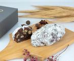 Stollen Chocolate(シュトレン・ショコラ)