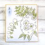 【讃山郷】色紙絵画・うつぎ/イラスト原画