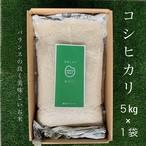 【コロナ自粛応援】コシヒカリ5kg(1袋)白米・送料無料!