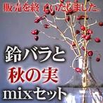 【販売終了間近!!】鈴バラと秋の実mixセット-束ねてリースにも-★コロナ救済★《送料無料》