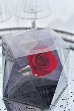 クリスマスギフト 婚約祝 結婚記念日 プリザーブドフラワーリング 赤 フェイクダイア付 Flower Gift