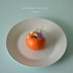 mysterious fruit pot (mikan) フラワーベース