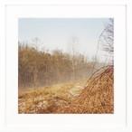 オルトレポーの冬景色 #1