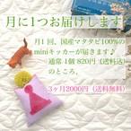 【3ヶ月定期便】猫用・またたび入miniキッカー