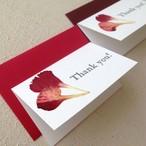 【母の日】カーネーションの押し花カード(1枚より)