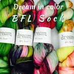 Dream in Color / BFL Sock
