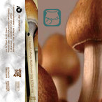 DJ Yogurt - Magic Mashroom Jazz & Dub