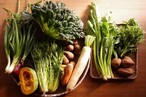 旬の野菜BOX L(7-12品)