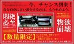 OUTLET【数量限定】 クリア×ホワイトバーLEDシーケンシャルテール