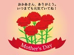 母の日【真空冷凍パック】詰め合わせ ローストビーフ入り全5種