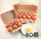 平飼い卵 80個