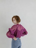 Dreamy Volume Sleeve Blouse