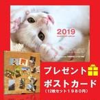 ねこ卓上カレンダー2019