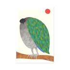 ポストカード【bird】