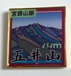 五井山 バッジ