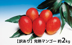 (M3)【訳あり】家庭用マンゴー 2Kg(約2kg、玉数指定不可)(段ボール入り)
