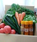 笹本農園さんの旬の採れたて野菜と三種のオリジナルドレッシングのセット