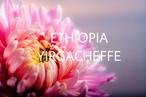 エチオピア150g