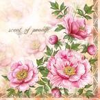 1月下旬入荷|新入荷【Maki】バラ売り2枚 ランチサイズ ペーパーナプキン Scent of Peony ピンク