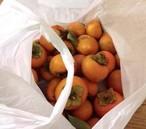 松葉家で採れた柿(一袋30個入り)