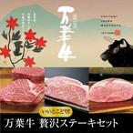 送料無料 万葉牛 いいとこどり贅沢ステーキセット 1.2kg