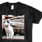 【4/21発売】必死すぎるネコ Tシャツ A