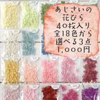 お得なあじさいの花びらセールです 40枚入アナベル全18色から 選べる3点1000円 <紫陽花・アジサイ>