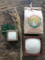 自然栽培米5kg「ひのひかり・きぬむすめ」(玄米/5分/7分/白米)