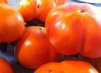Persimmon ゆたん柿のジャム