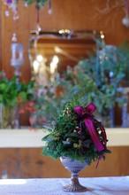 フレッシュクリスマストピアリー(ツリー型・小)
