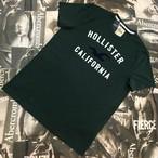 HOLLISTER MENS Tシャツ Mサイズ